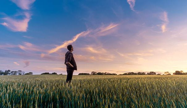 a man in a field looking towards the sky